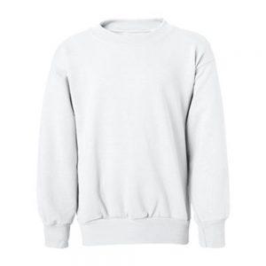 Hanes Boys 4-18 EcoSmart Fleece Sweatshirt