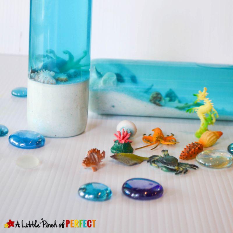 Mini Aquarium Bottle Craft